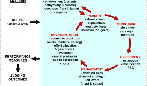 How to evaluate different options of strategies